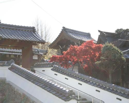 06-04-Sogenji