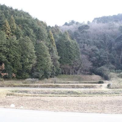 15-07-Mukaiyama